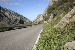 Раскройте дорогу в национальном парке Grazalema Стоковые Фотографии RF