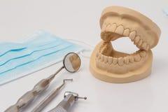 Раскройте зубоврачебную прессформу зубов с инструментами Стоковое фото RF