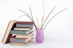 Раскройте книгу, книги hardback красочные на деревянном столе, белой предпосылке задняя школа к Космос экземпляра вазы для текста Стоковое фото RF
