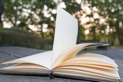 Раскройте книгу на восходе солнца предпосылки деревянной скамьи Стоковое Изображение