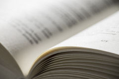 Раскройте книгу с глубиной поля ласточки Стоковое Изображение RF
