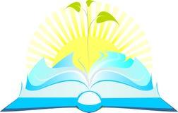 Раскройте книгу с ростком дерева Стоковое Изображение RF