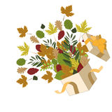 Раскройте коробку с листьями осени Стоковые Изображения RF