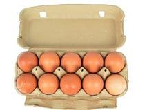 Раскройте коробку яичек Стоковые Фото