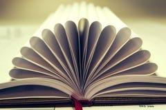 Раскройте дневник Стоковые Изображения RF