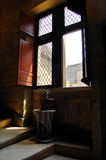 раскройте окно лестниц завода Стоковая Фотография
