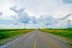 Раскройте дорогу под облачным небом между полями солнцецвета Стоковые Фото