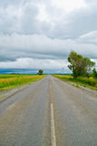 Раскройте дорогу под облачным небом между полями солнцецвета Стоковые Изображения RF
