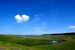 Раскройте поле в национальном парке Йеллоустона Стоковая Фотография