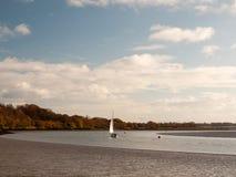 Раскройте пустой поток с одиночным плаванием гребли вдоль солнечного дня Стоковое фото RF
