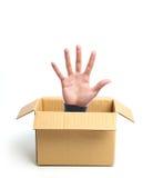 Раскройте руку из коробки Стоковое Изображение RF