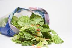 Раскройте сумку салата стоковые изображения