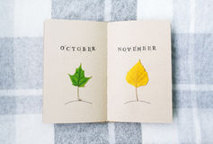 Раскройте тетрадь, березу и кленовые листы на таблице октябрь ноябрь Стоковые Изображения