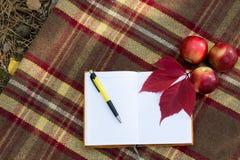 Раскройте тетрадь и пишите на половике с яблоками и листьями красного цвета Стоковое Изображение