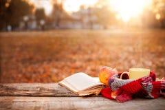 Раскройте чашку книги, яблока и чая с теплым шарфом Стоковое Изображение