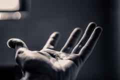 Раскройте человеческую руку стоковая фотография rf