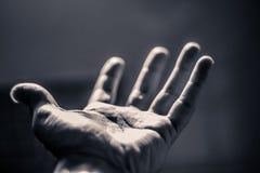 Раскройте человеческую руку стоковые фотографии rf
