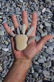 Раскрытая мужская рука держа насмешливую ладонь камней моря Стоковое Изображение RF