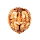 Раскрытая половина грецкого ореха в изолированной раковине Стоковое фото RF