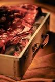 раскрытый сбор винограда чемодана Стоковые Фотографии RF