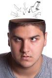 раскрытый человек полости головной Стоковая Фотография