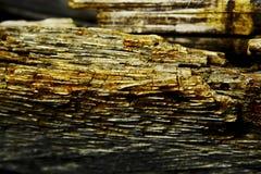 распадаясь древесина Стоковая Фотография RF