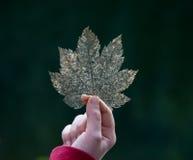 распадаясь листья удерживания руки Стоковое Изображение