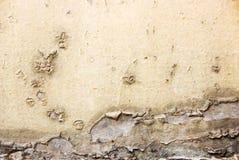 распаденная несенная текстура Стоковое фото RF