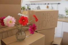 Распаковывающ коробки в новых домашних и кладя вещах прочь в кухне, большие картонные коробки в новом доме Двигать к новой концеп Стоковая Фотография RF