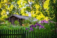 Расплывчатая предпосылка сада Стоковые Фото
