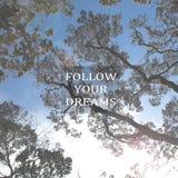 Расплывчатые ветви дерева против голубого неба с вдохновляющей цитатой Стоковое фото RF