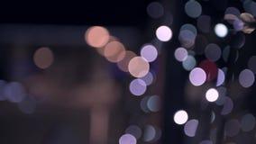 Расплывчатые света рождественской елки сток-видео