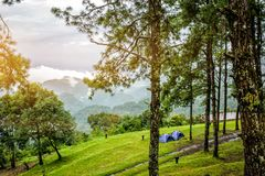 Располагаться лагерем около сценарного пятна на Чиангмае в Таиланде стоковые фотографии rf