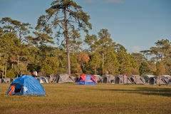располагаться лагерем Стоковая Фотография