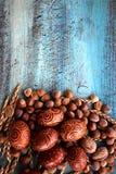 Расположение пасхальных яя естественное при сказанные по буквам фундуки, стержени абрикоса грецкие орехи Стоковые Фото