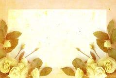 расположение цветка на cream текстурированной предпосылке Стоковое фото RF