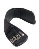 Распорка размягченности Dressage черная изолированная на белизне стоковая фотография rf