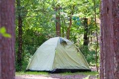 Располагаться лагерем внешний с шатром в древесинах в лете Стоковое Изображение