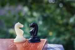 Располагаться лагерем в игре в шахматы Стоковые Изображения