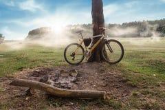 Располагаться лагерем - горный велосипед стоя около дерева на туманном восходе солнца Стоковое Изображение RF