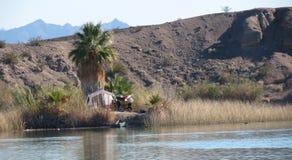 Располагаться лагерем каное стоковые фото