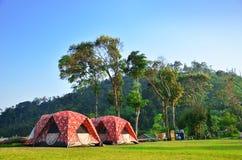 Располагаться лагерем с естественным стоковое фото