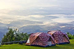Располагаясь лагерем шатер на долине в утре с туманом. Стоковые Фото