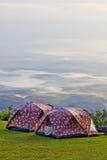 Располагаясь лагерем шатер на долине в утре с туманом. Стоковое фото RF