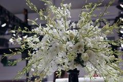 Расположение белого цветка Стоковые Изображения RF