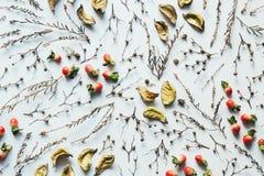 Расположение натюрморта с красными ягодами Стоковое Фото