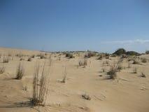 Песчанные дюны первого полета в Северной Каролине Стоковое Фото