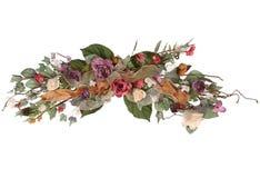 расположение цветка Стоковое Фото