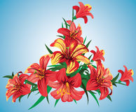 расположение цветка Стоковые Изображения RF