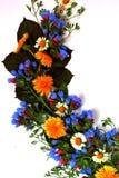 расположение цветка Стоковые Фото